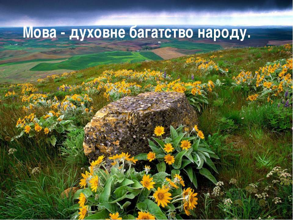 Мова - духовне багатство народу.
