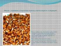 Масло, отримане з паростків пшениці застосовують в медицині Масло, отримане з...