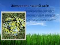 Живлення лишайників Живлення лишайників здійснюється за рахунок процесів фото...