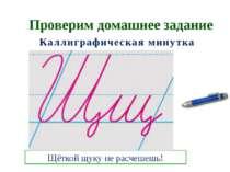 Проверим домашнее задание Каллиграфическая минутка Щёткой щуку не расчешешь!