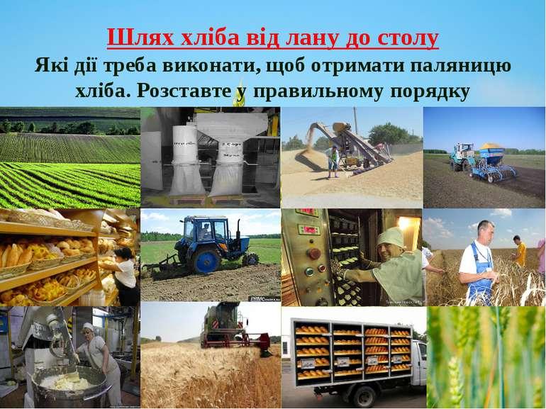 Шлях хліба від лану до столу Які дії треба виконати, щоб отримати паляницю хл...