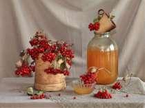 Які рослини особливо шанують українці взимку?