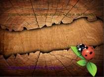Соколова Надія Ігорівна Урок розвитку зв'язного мовлення. Доповнення тексту-р...
