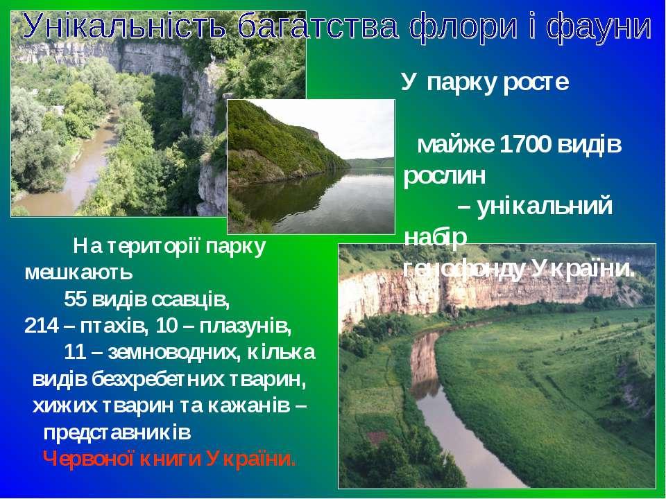 У парку росте майже 1700 видів рослин – унікальний набір генофонду України. Н...