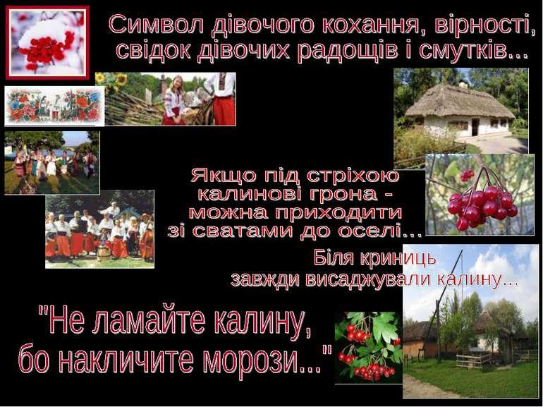 Калинівка, Калина, Калинова, Червоно - калинівка