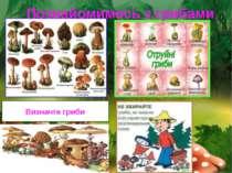 Визначте гриби Познайомимось з грибами