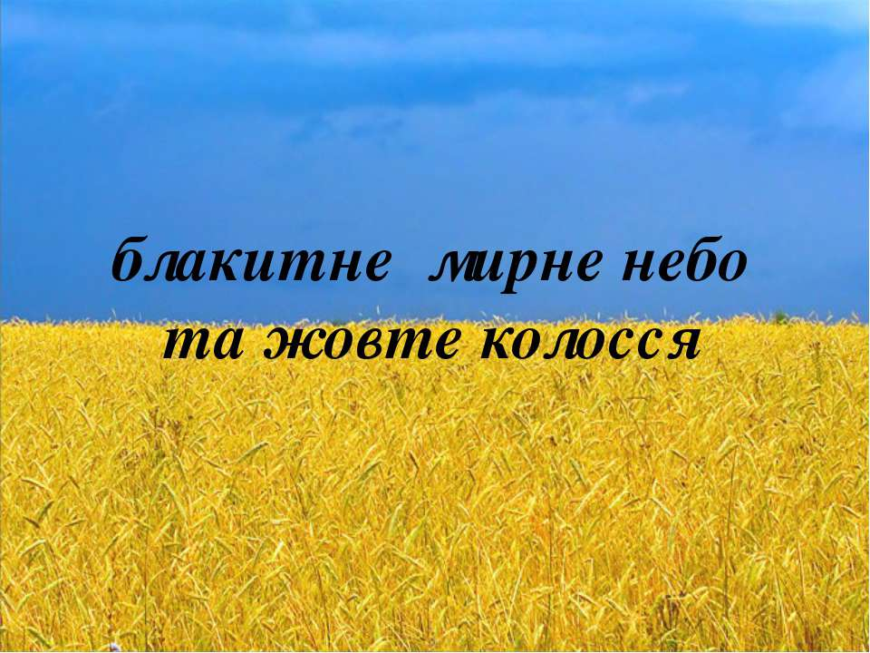 блакитне мирне небо та жовте колосся