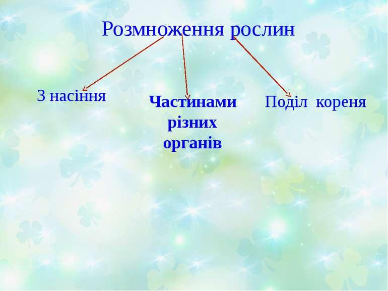 Розмноження рослин З насіння Поділ кореня Частинами різних органів
