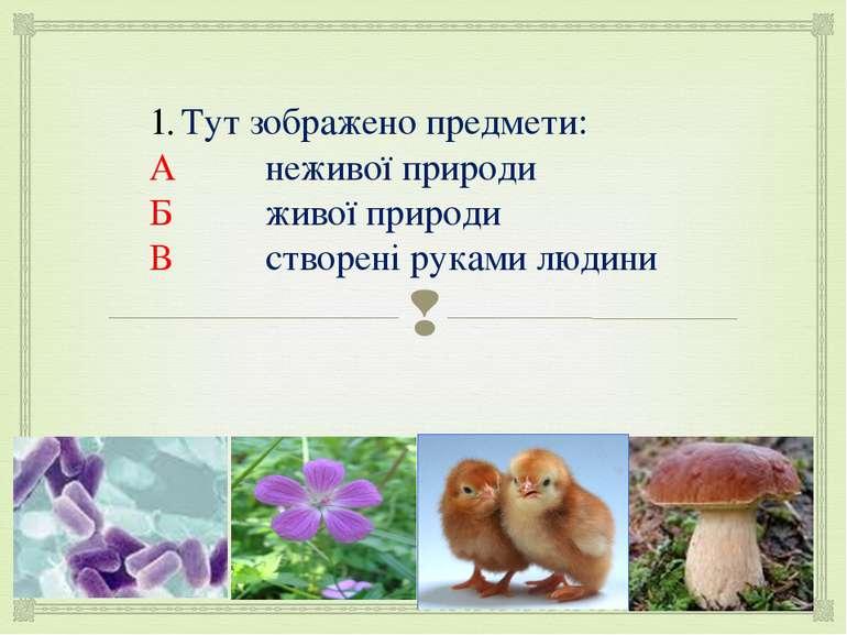 Тут зображено предмети: А неживої природи Б живої природи В створені руками л...
