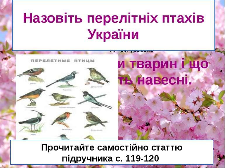 Подивимося кліп Визначте назви тварин і що вони роблять навесні. Назовіть пер...