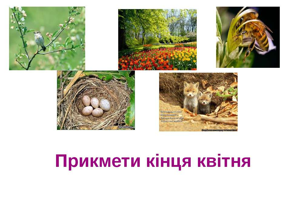 Прикмети кінця квітня