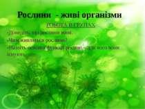Рослини - живі організми РОБОТА В ГРУПАХ -Доведіть, що рослини живі. -Чим жив...