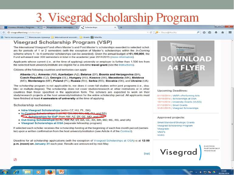 3. Visegrad Scholarship Program