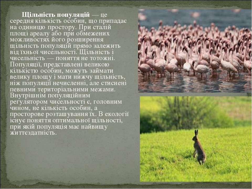 Щільність популяцій— це середня кількість особин, що припадає на одиниц...