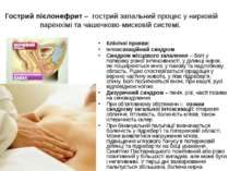 Гострий пієлонефрит – гострий запальний процес у нирковій паренхімі та чашечк...