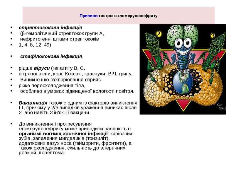 Причини гострого гломерулонефриту стрептококова інфекція (β-гемолітичний стре...