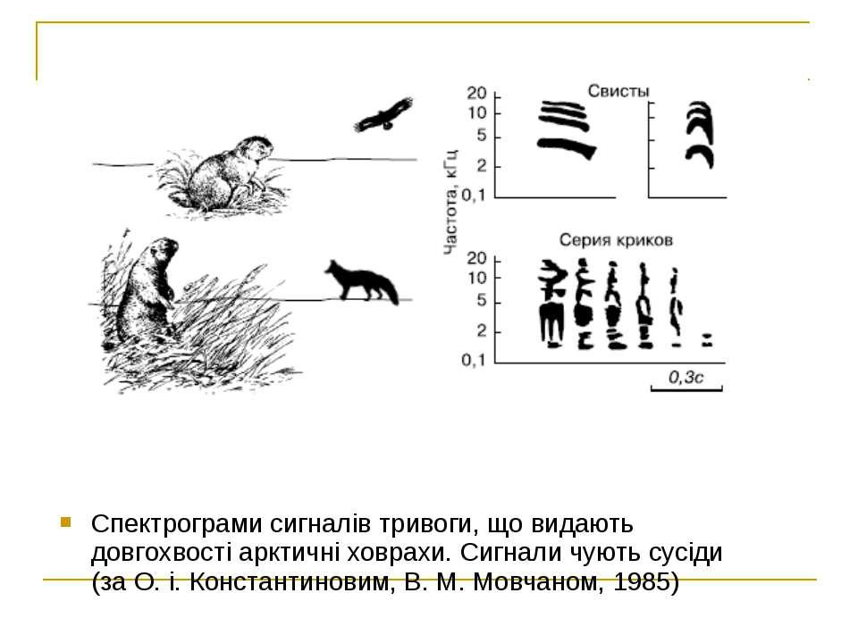 Спектрограми сигналів тривоги, що видають довгохвості арктичні ховрахи. Сигна...