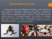 Мутаційний процес Спонтанний мутаційний процес відбувається безперервно, а му...
