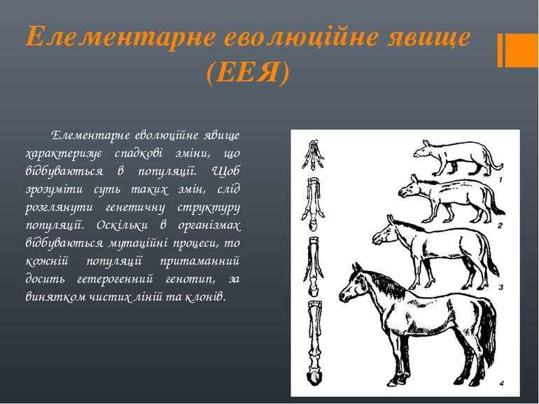 Елементарне еволюційне явище (ЕЕЯ) Елементарне еволюційне явище характеризує ...