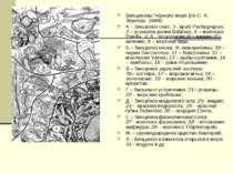 Биоценозы Черного моря (по С. А. Зернову, 1949): А – биоценоз скал: 1–краб P...