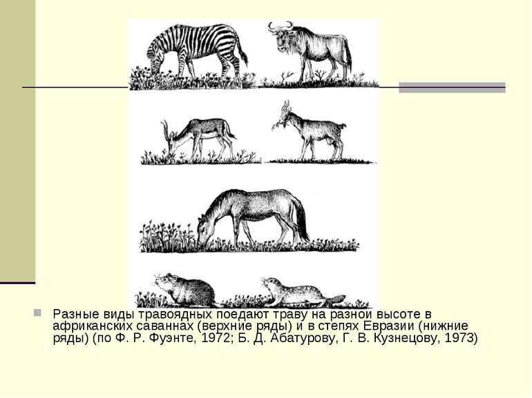 Разные виды травоядных поедают траву на разной высоте в африканских саваннах ...