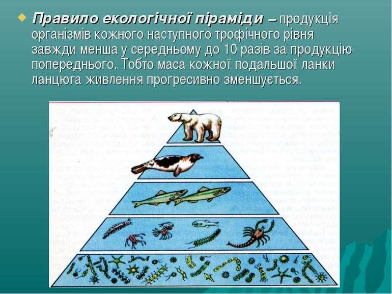 Правило екологічної піраміди − продукція організмів кожного наступного трофіч...
