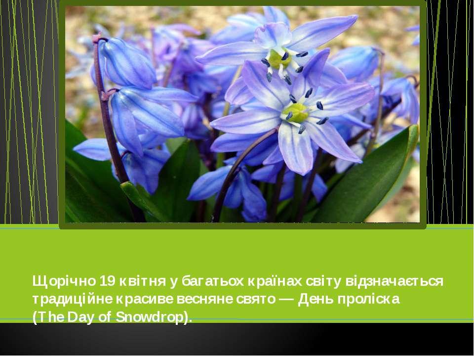 Щорічно 19 квітня у багатьох країнах світу відзначається традиційне красиве в...