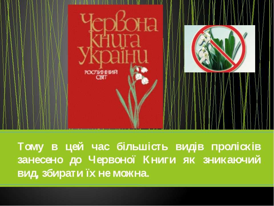 Тому в цей час більшість видів пролісків занесено до Червоної Книги як зникаю...