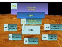 Мінеральна речовина Органічна частина грунту 7% 93% Грунт Гриби та водорості ...