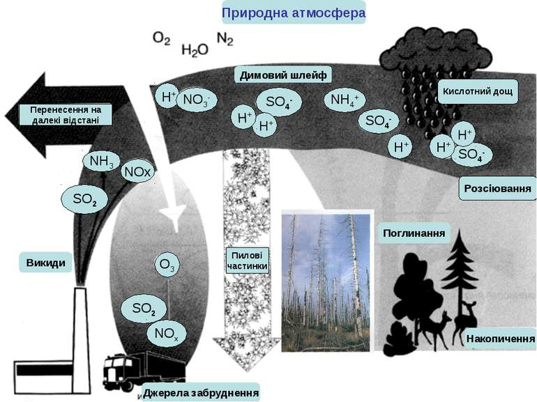 Природна атмосфера SO2 SO2 SO4- SO4- SO4- H+ H+ H+ H+ H+ Кислотний дощ Пилові...