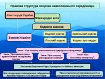 Міжнародні акти Правова структура охорони навколишнього середовища. Конституц...