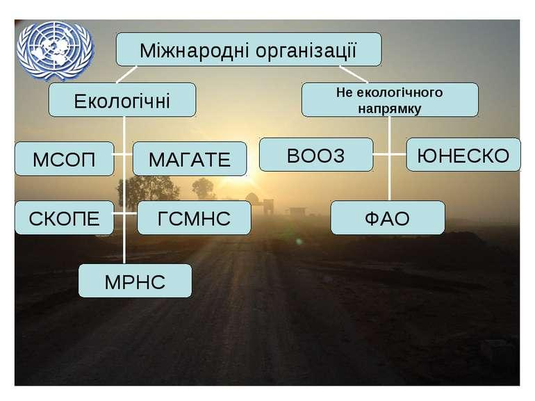 Міжнародні організації Екологічні МАГАТЕ МСОП ФАО ЮНЕСКО ВООЗ Не екологічного...