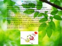 Значення фотосинтезу Фотосинтез є основним джерелом біологічної енергії, фото...
