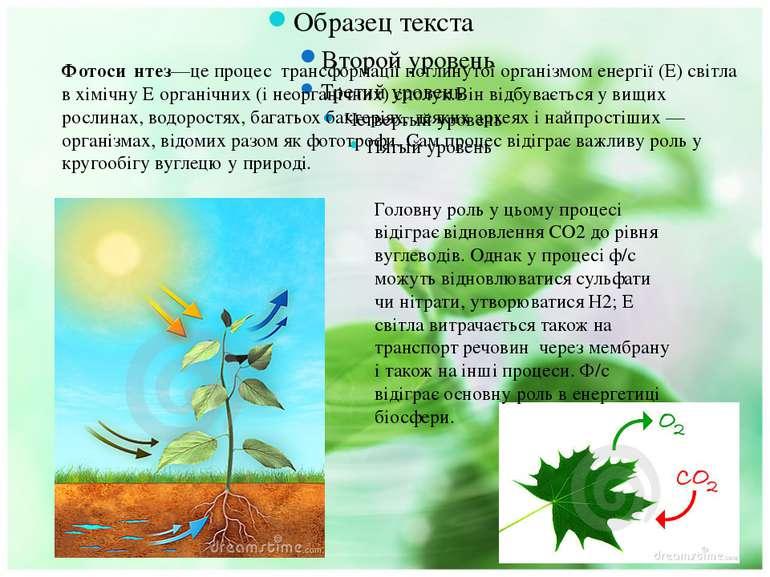 Фотоси нтез—це процес трансформації поглинутої організмом енергії (Е) світла ...