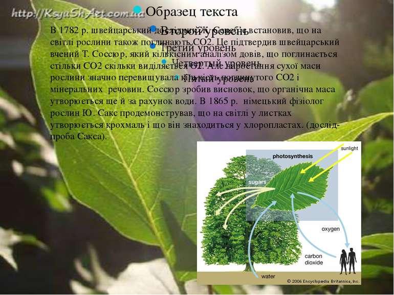 В 1782 р. швейцарський дослідник Ж. Сенеб'є встановив, що на світлі рослини т...