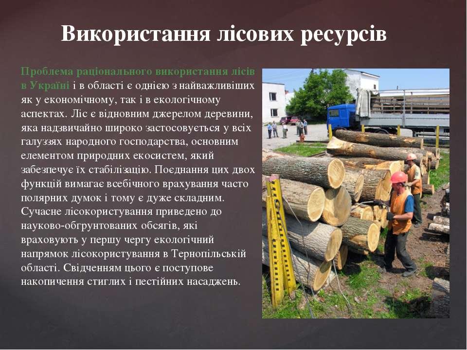 Використання лісових ресурсів Проблема раціонального використання лісів в Укр...