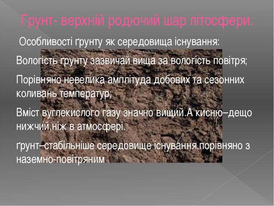 Грунт- верхній родючий шар літосфери. Особливості ґрунту як середовища існува...