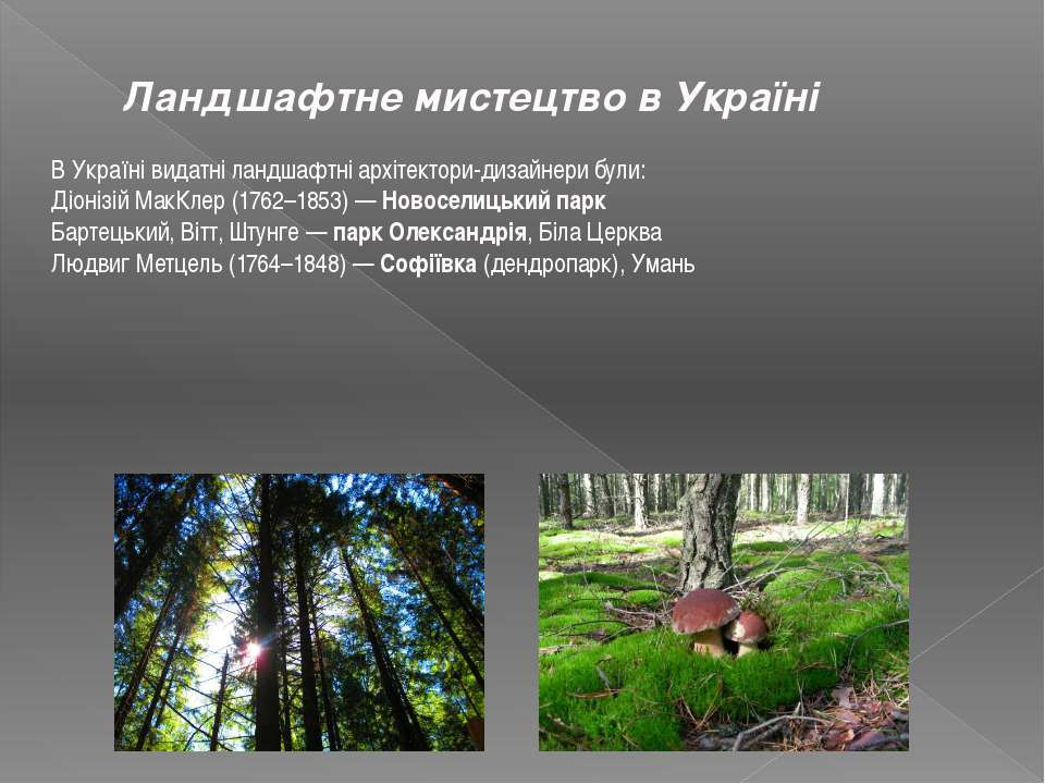 Ландшафтне мистецтво в Україні В Україні видатні ландшафтні архітектори-дизай...