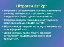 Нітроген 2s2 2p3 Нітроген є обов'язковим хімічним елементом у складі амінокис...