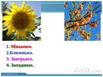 Description of the contents 1. Мішаним. 2.Близенько. 3. Завтрього. 4. Западин...