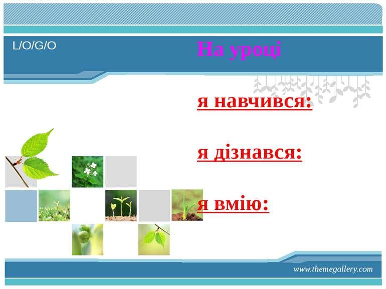 www.themegallery.com На уроці я навчився: я дізнався: я вмію: L/O/G/O