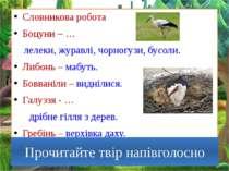 Словникова робота Боцуни – … лелеки, журавлі, чорногузи, бусоли. Либонь – маб...
