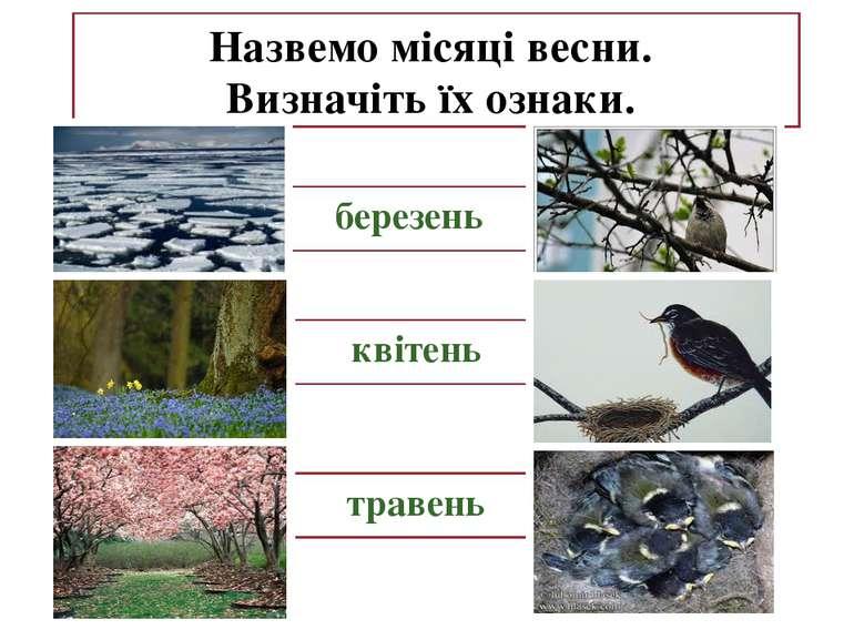 Назвемо місяці весни. Визначіть їх ознаки. березень квітень травень