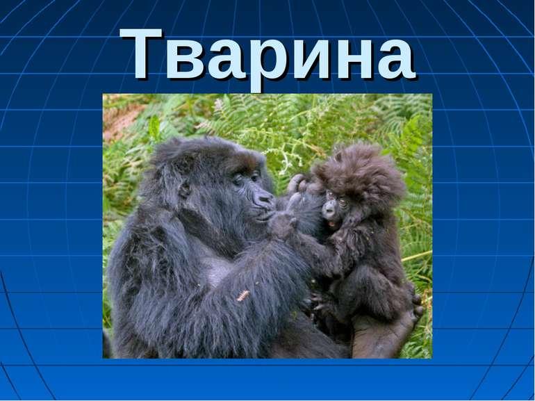 Тварина