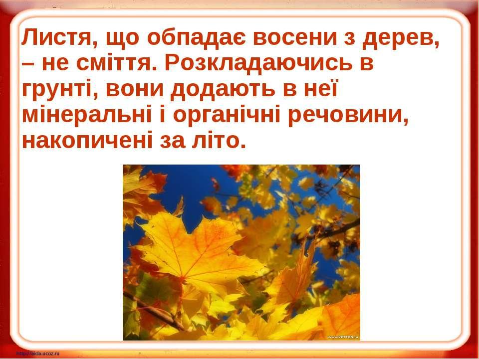 Листя, що обпадає восени з дерев, – не сміття. Розкладаючись в грунті, вони д...