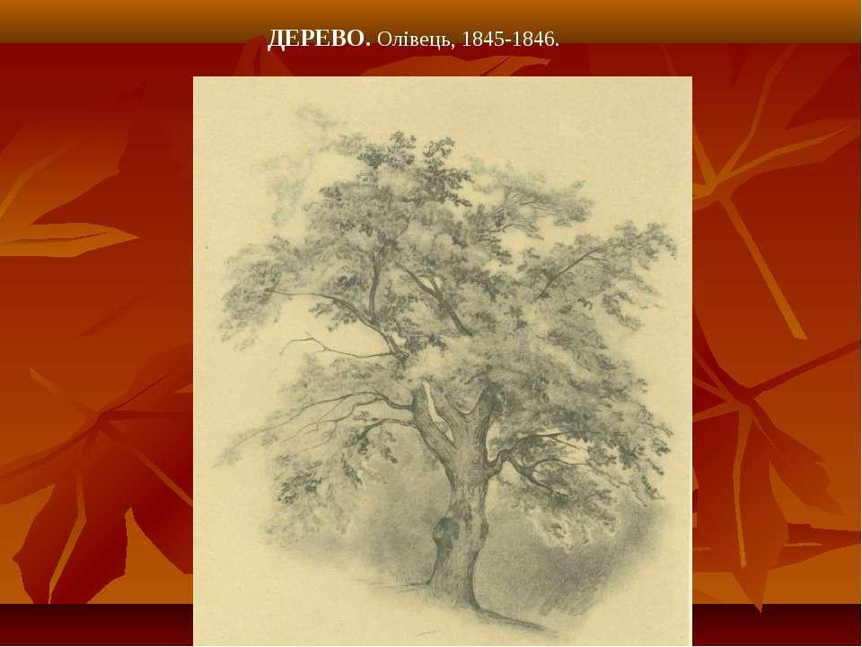 ДЕРЕВО. Олівець, 1845-1846.