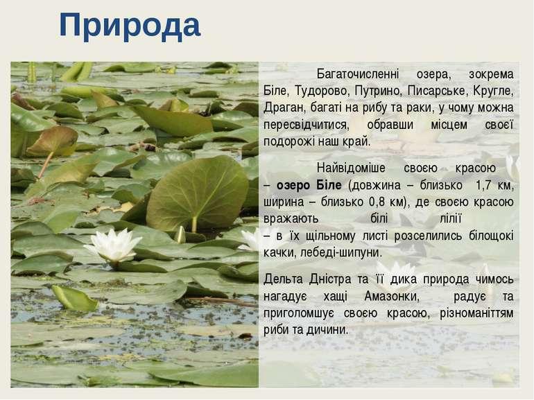 Багаточисленні озера, зокрема Біле, Тудорово, Путрино, Писарське, Кругле, Дра...