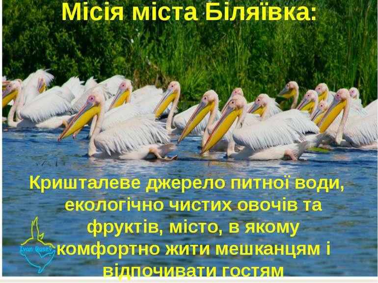 Місія міста Біляївка: Кришталеве джерело питної води, екологічно чистих овочі...