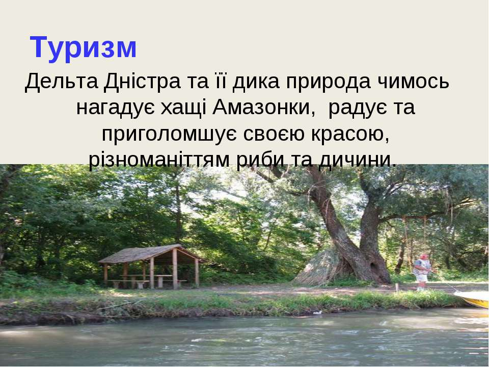 Туризм Дельта Дністра та її дика природа чимось нагадує хащі Амазонки, радує ...