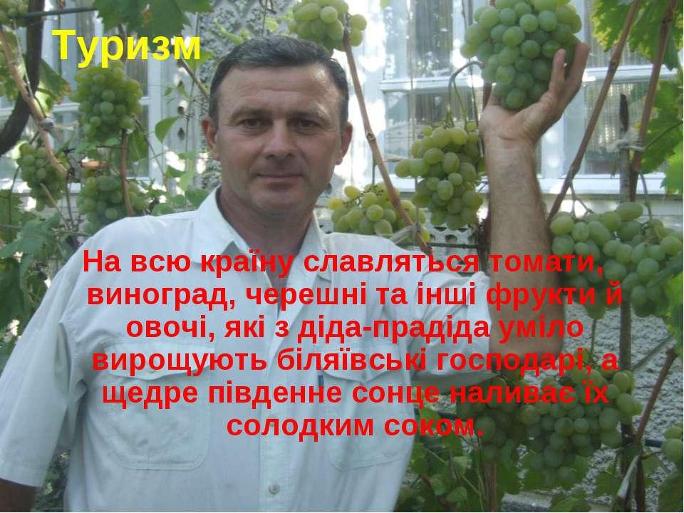 На всю країну славляться томати, виноград, черешні та інші фрукти й овочі, як...